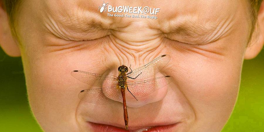 BugWeek@UF